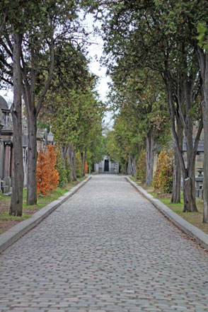 cobblestone street lined with trees and grave markers