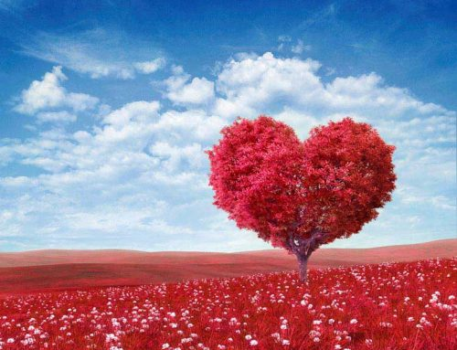 Choosing Love: A Message for Stepparents