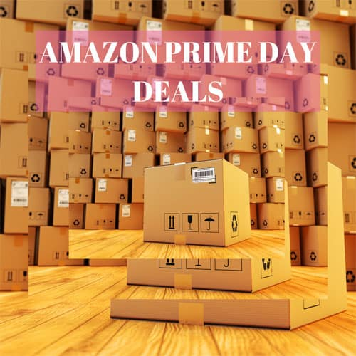 How To Crush Amazon Prime Day! (as of July 15th)