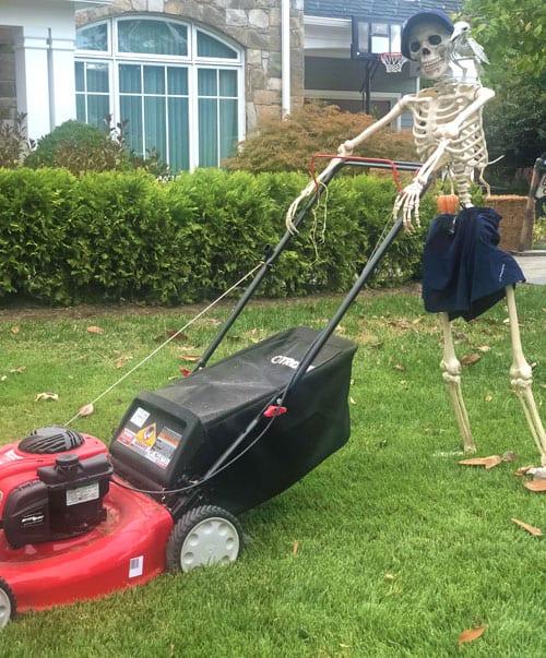 Halloween decorating skeleton